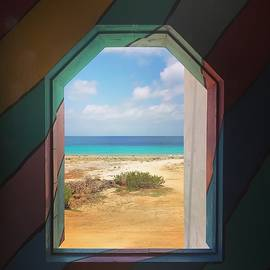 Jennifer Ansier - Window to Bonaire