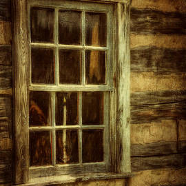 Lois Bryan - Window To The Past