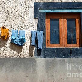 Window by Yew Kwang