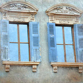 Reese Lewis - European Windows And Shutters