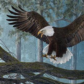 Martin Wilneff - Wings of Precision Bald Eagle