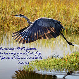 Wings of Refuge with Scripture