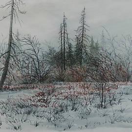 Winter, Alberta by E Colin Williams ARCA