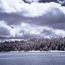 Winter At Lake Mary by Cathy Franklin