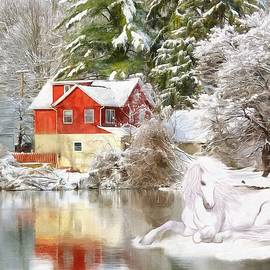 Patricia Beil - Winter Beauty