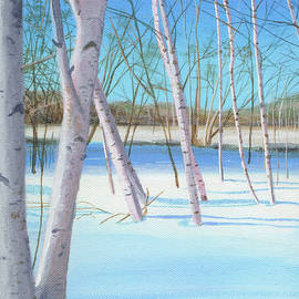 Norb Lisinski - Winter Birches
