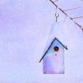 Theresa Tahara - Winter Birdhouse