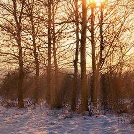 Wim Lanclus - Winter Break