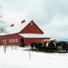 Alan Brown - Winter Cattle Barn