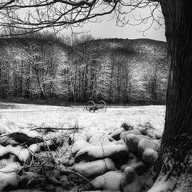 Winter Dreary by Bill Wakeley