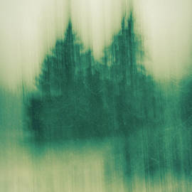 Olivia StClaire - Winter Fir Trees