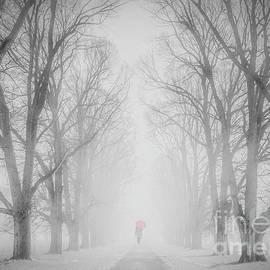 Winter Fog by Jim Hatch