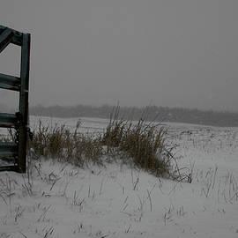 Winter Gate by Dylan Punke