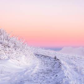 Serge Skiba - Winter Glow on Roan Mountain