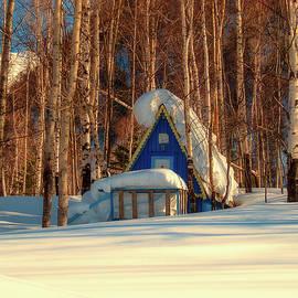 pixabay - winter hideaway in siberia