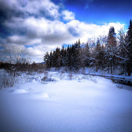 David Patterson - Winter Highlights