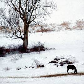 Janine Riley - Winter Horse Pasture 1