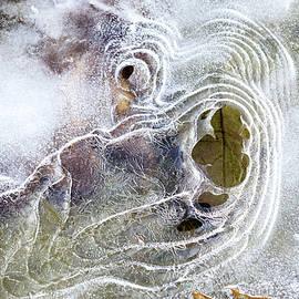 Christina Rollo - Winter Ice