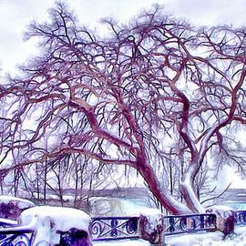 Leslie Montgomery - Winter In Niagara 2