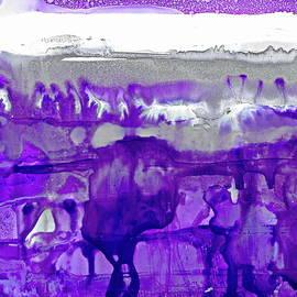 Dana Roper - Winter in Purple and Silver