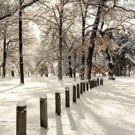 Jack Milton - Winter in the Park