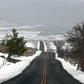 Nicholas Blackwell - Winter Journey 1