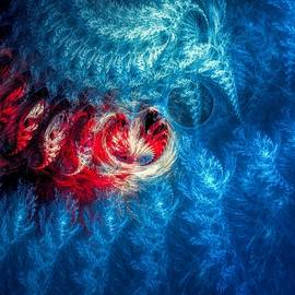 Marfffa Art - Winter Lace