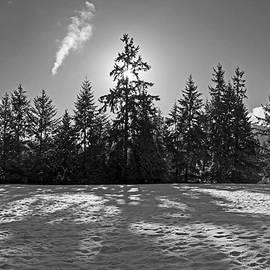 Inge Riis McDonald - Winter Landscape - 365-317