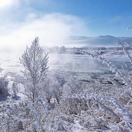 Oksana Ariskina - Winter Landscape