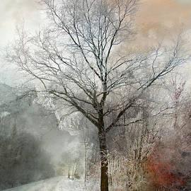 Annie Snel - Winter Magic