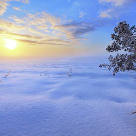 Winter Magic - Dan Jurak