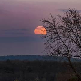 Winter Moonrise by Sven Kielhorn