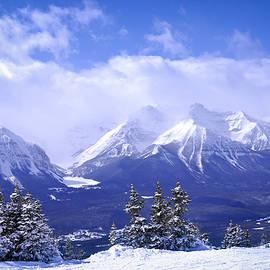 Winter Mountains by Elena Elisseeva