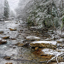 Thomas R Fletcher - Winter on Cranberry River