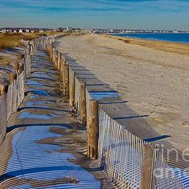 Amazing Jules - Winter on Duxbury Beach