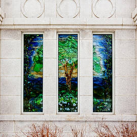 Greg Collins - Winter Quarters Temple Tree of Life Stained Glass Window Details
