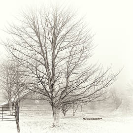 Winter Ranch by Grace Dillon