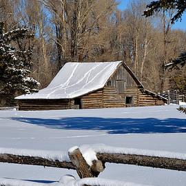 Michael Morse - Winter Ranch