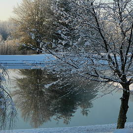 Winter Reflection by Arlane Crump