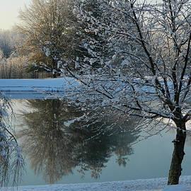 Arlane Crump - Winter Reflection