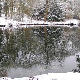 Winter Reflections 3 by Lynne Iddon