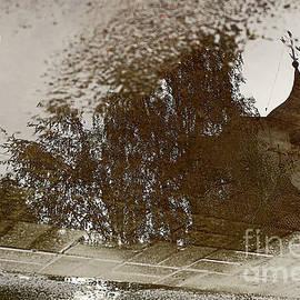 Winter reflections. by Alexander Vinogradov