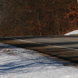 Winter Run by Linda Shafer