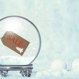 Winter Sale Snow Globe - Amanda Elwell