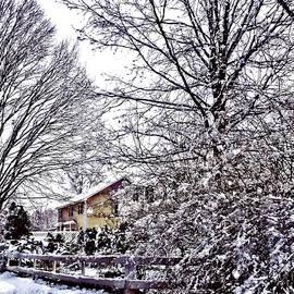 Susan Savad - Winter Scene