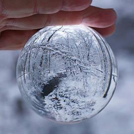 Suzanne Stout - Winter Snow Globe