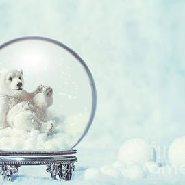 Winter Snow Globe With Polar Bear - Amanda Elwell