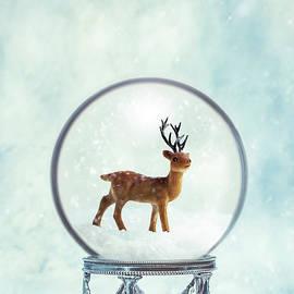 Winter Snow Globe With Reindeer - Amanda Elwell