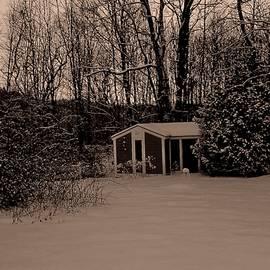 Elizabeth Tillar - Winter Stillness