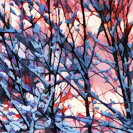 Betsy Zimmerli - Winter Sunrise